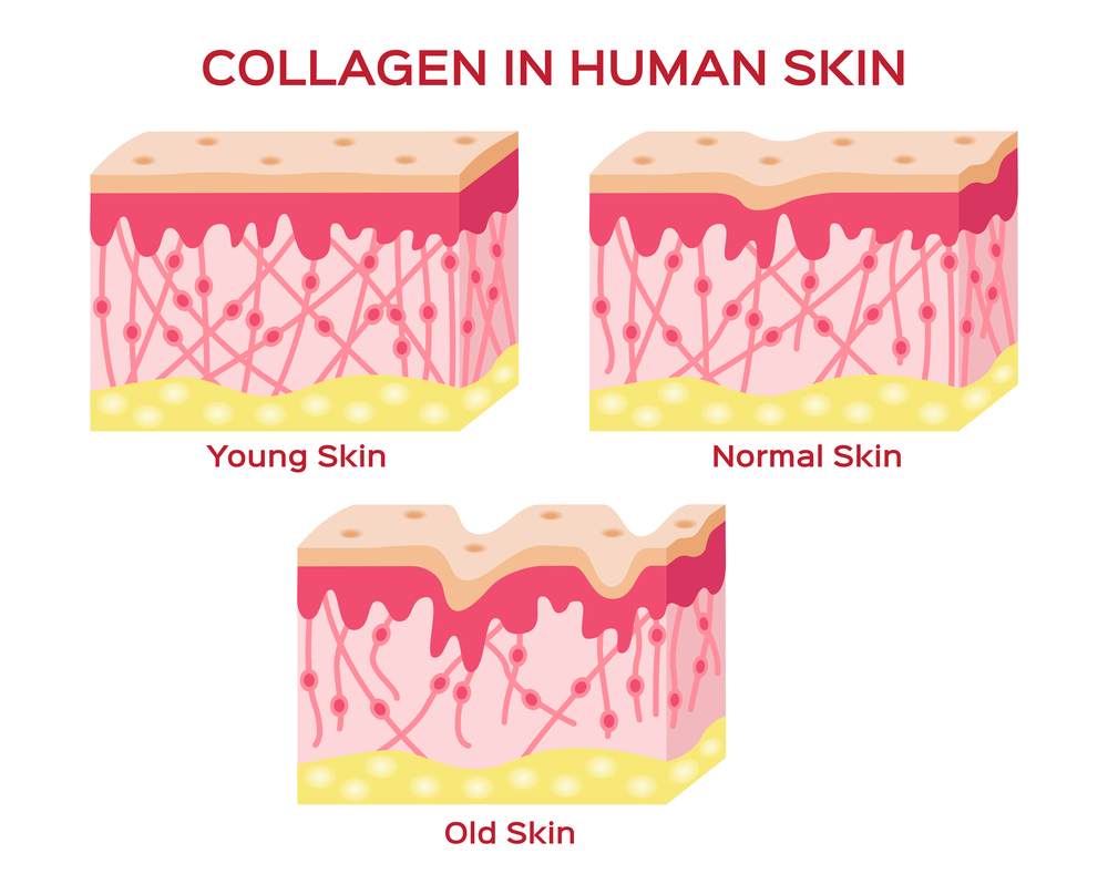 Encourage Collagen Production